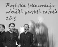 banner_2013_11_jskd_regijska_odrasli_past