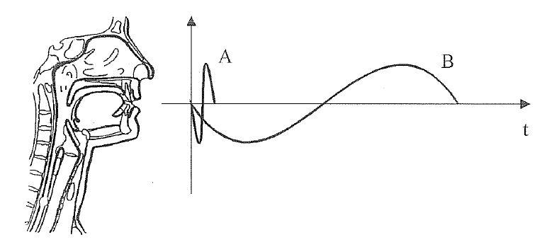 Slika 2: Primerjava visokega in nizkega tona (A – visok ton, B – nizek ton)